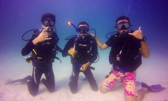 Diving Trips And Courses In Shah Alam, Malaysia