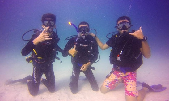 Diving Trips And Courses  In Shah Alam