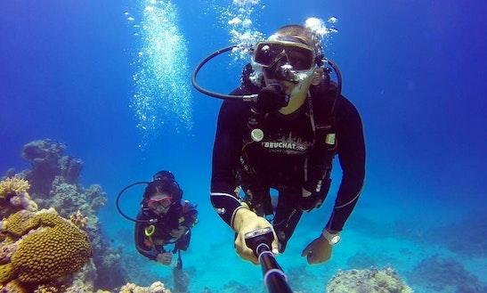 Diving Trip In Dibba Al Fujairah
