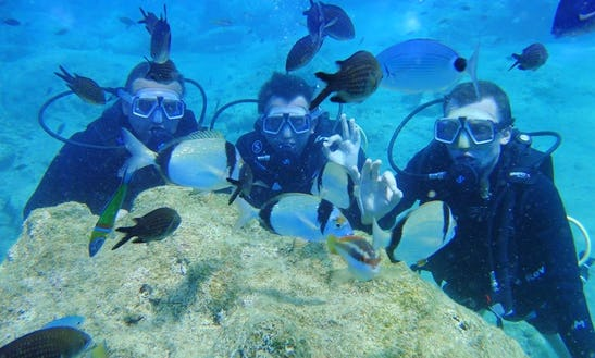 Diving Trips And Courses In Antalya, Turkey