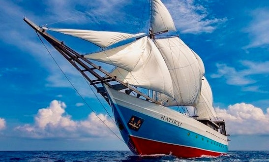 Hatiku Diving Liveaboard Trips In Kecamatan Mataram