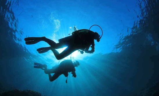 Diving Trips In Jezera, Croatia