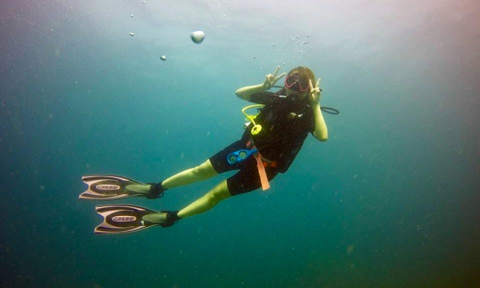 Diving Trips and Course in Johor Bahru, Malaysia