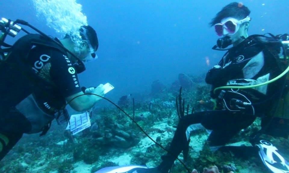 Diving Trips in Les Trois-Îlets, Martinique