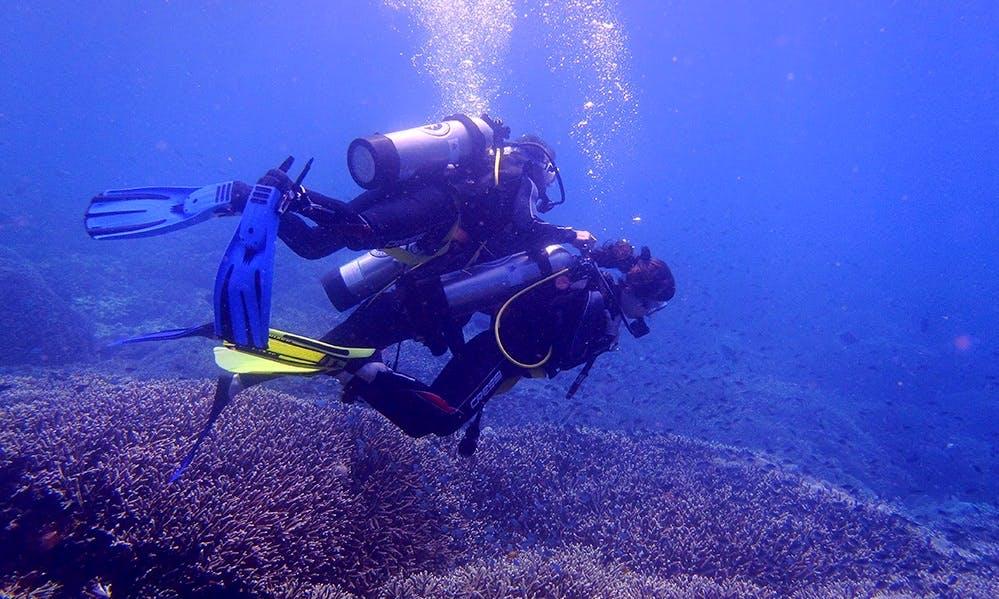Explore the aquatic life of Kuta Selatan, Bali on a Scuba Diving Charter