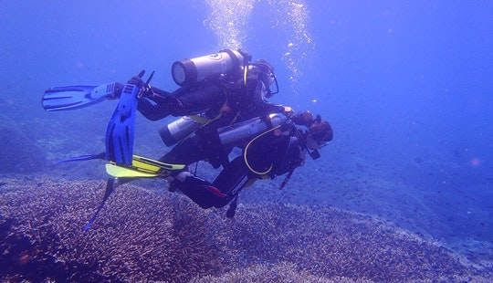 Explore The Aquatic Life Of Kuta Selatan, Bali On A Scuba Diving Charter