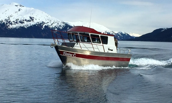 Charter The 28′ Cuddy Cabin  In Whittier, Alaska