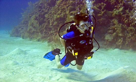 Glow Diving Trip In Phuket