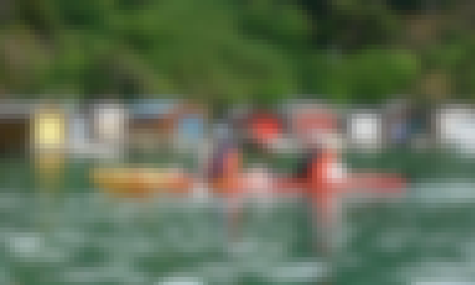 Guided Kayak Safari Tours in Akaroa, New Zealand