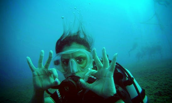 Try Scuba Diving At The Zenobia Wreck, Larnaca Cyprus