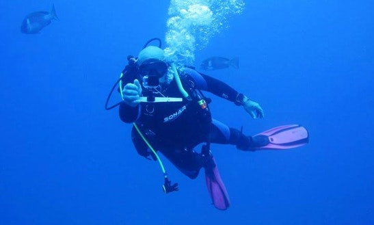 Diving Trips And Courses In Jubilee Pocket