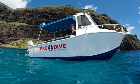 Diving Trips & Courses In Lord Howe Island
