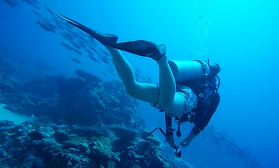 Diving Trips And Lessons In Hengchun Township