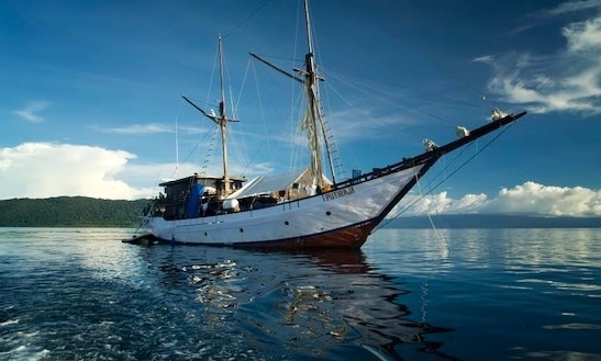 Live Aboard Diving Tour Sailboat In Indonesia