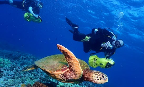 Scooter Diving For Certified Divers In Lahaina