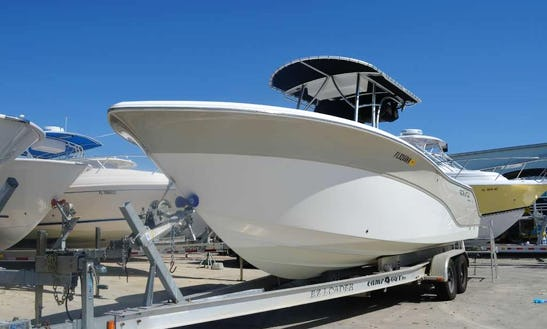 25' Seafox 256 Center Console For Rent In Miami (with Captain Only)