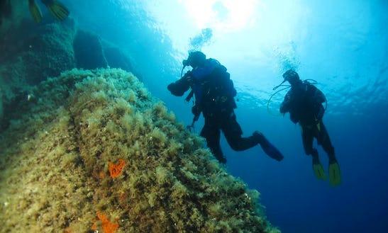 Scuba Diving Tour In Marciana