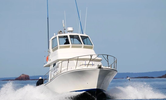 'rathlin 11'  Fishing Charter In Merimbula