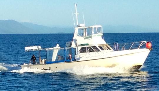 Aqua Cat Fishing Trips In Cairns City