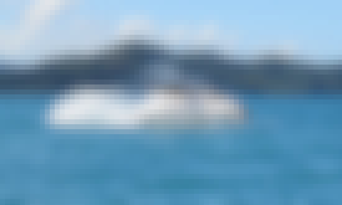 Whale Watching Tours in Airlie Beach