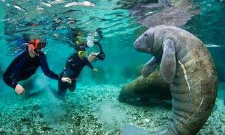 Scuba Diving Lessons in Ljubljana