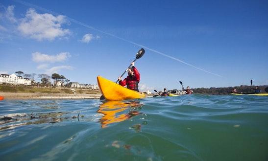 Single Kayak Tour In Falmouth