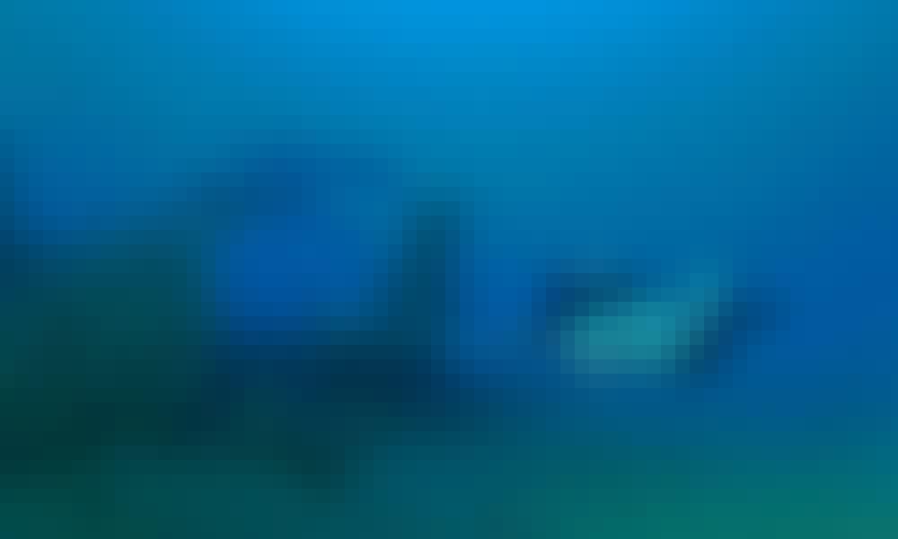 Scuba Diving Trips in Wooli