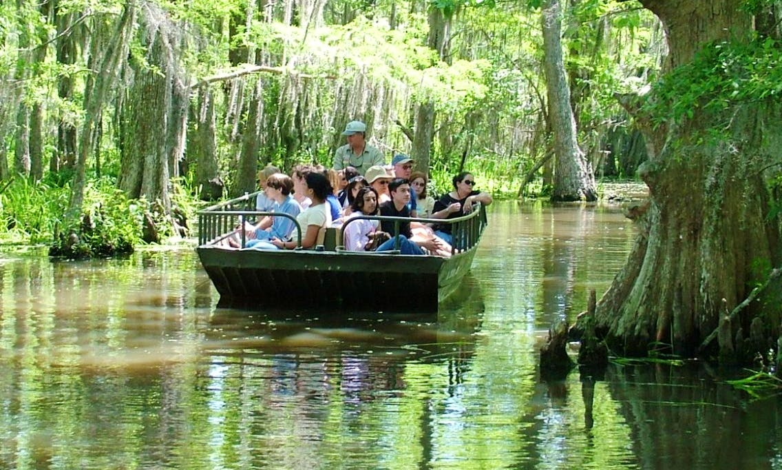 Swamp Tour in Slidell, Louisiana