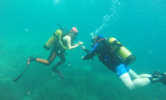 Diving Trips And Courses In Cluj-napoca
