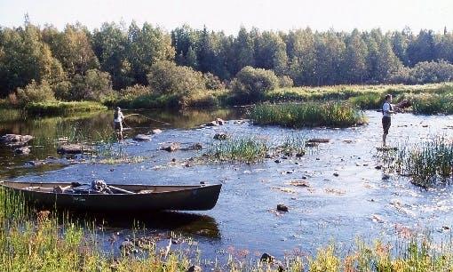 Canoe Rental in Kivijärvi