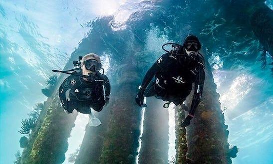 Diving Tour In Taipei, Taiwan