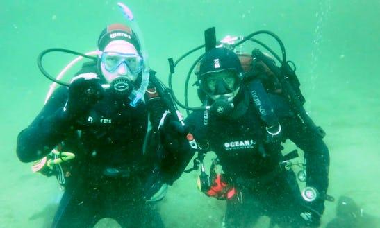 Diving Tours In Helsingør