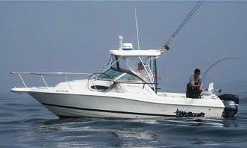 24′ Wellcraft Walk Around Fishing Charter in Comox