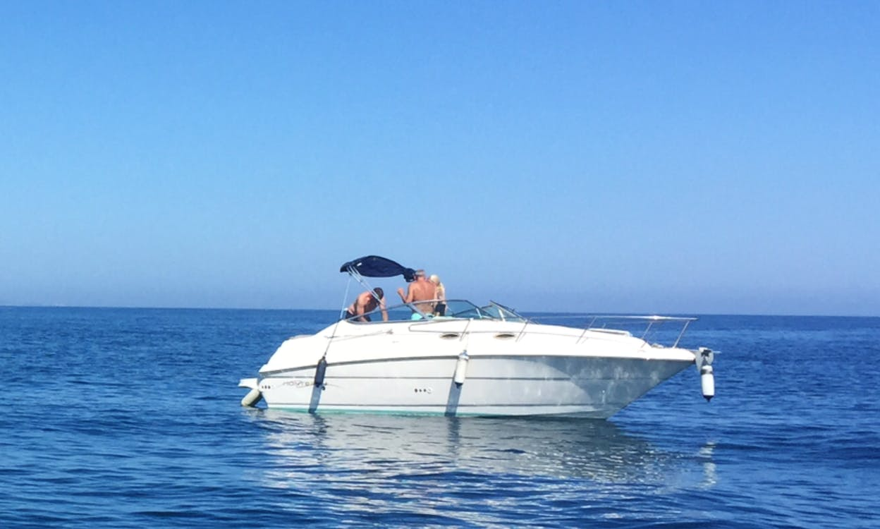 Monterey 242 Day Cruiser Motor Yacht Ready to Book in Marbella