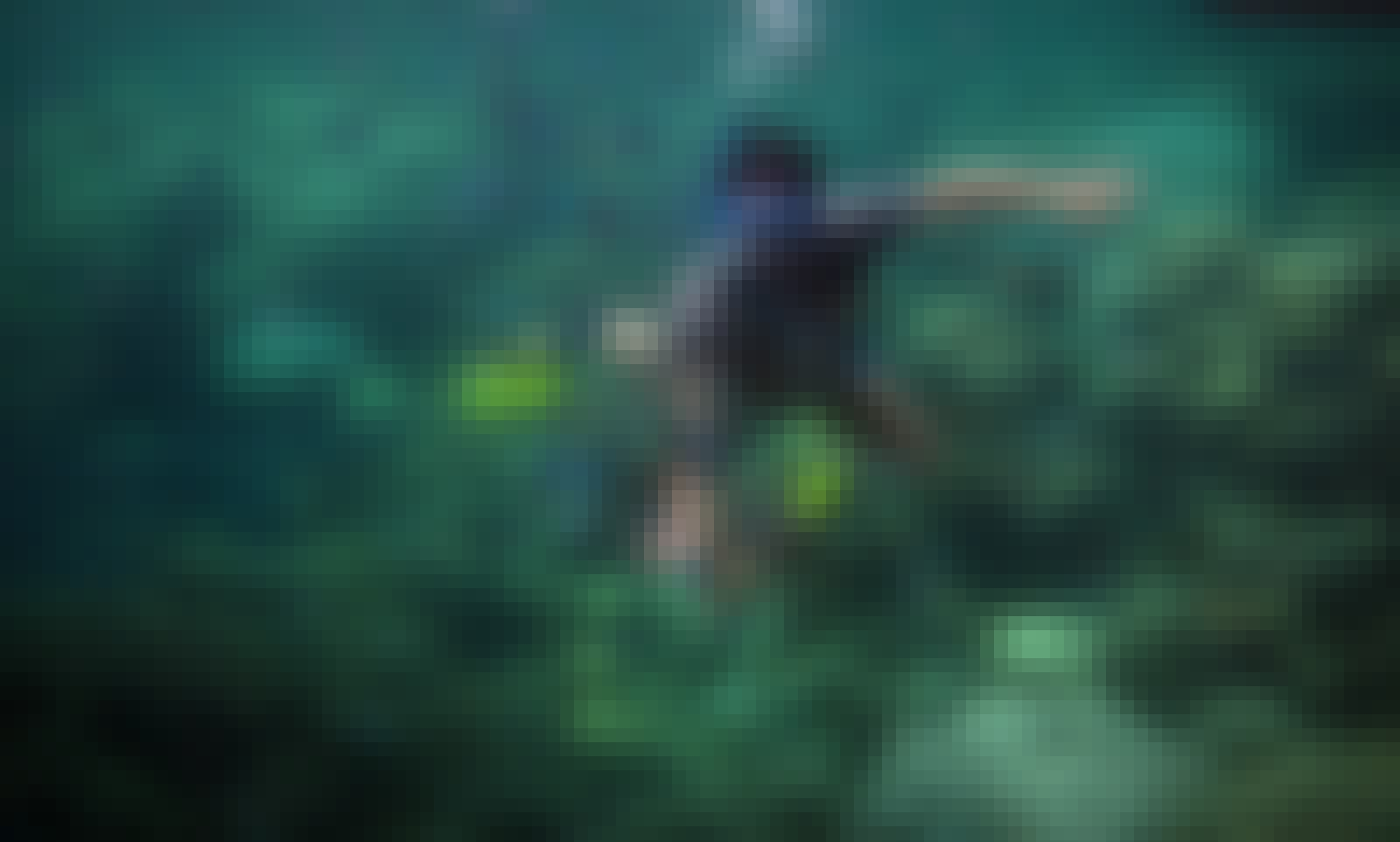 3 Day Snorkeling Tour in Kuta Selatan
