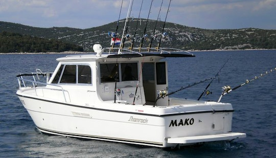 Mackinaw Fishing Charter In Jezera
