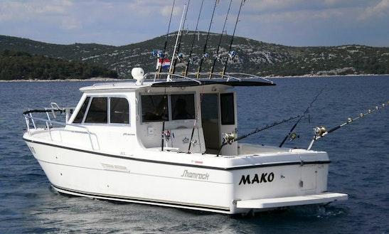 Mackinaw Fishing Charter In Jezera
