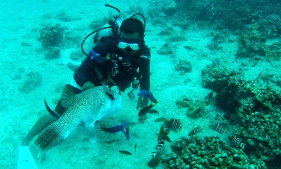 Diving Courses In Kuantan