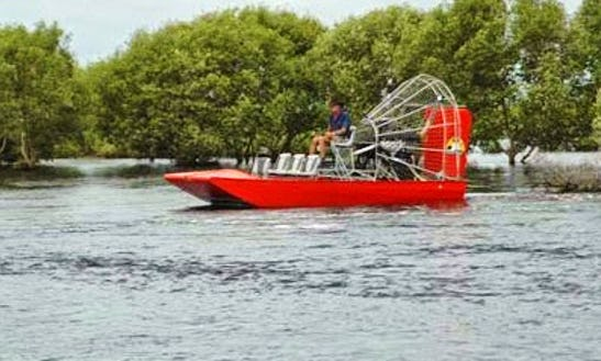 Air Boat Tours In Herbert