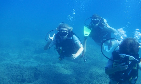 Diving Tour In Ilia, Greece