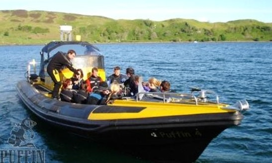 Rib Boat Diving Trips In Scotland