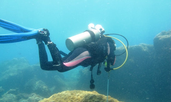 Diving Trips And Courses In Trincomalee
