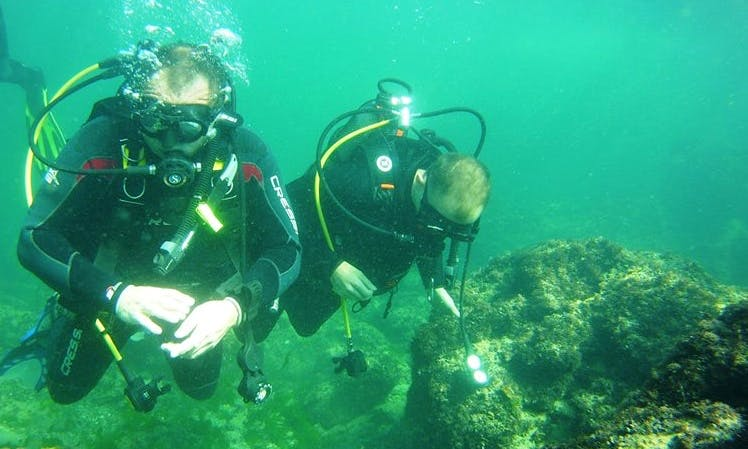 Diving Courses in Bucuresti, Romania