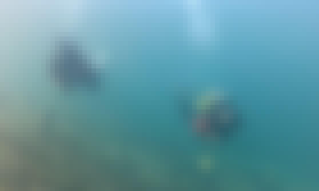 Learn to Scuba Dive in Austria