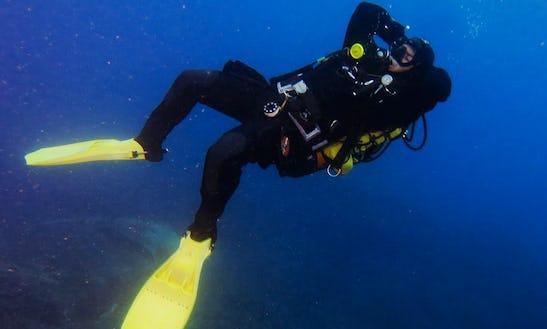 Scuba Diving In Piombino