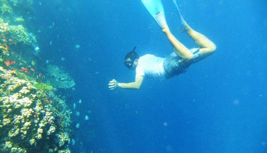 Snorkeling Tours In Denpasar Utara