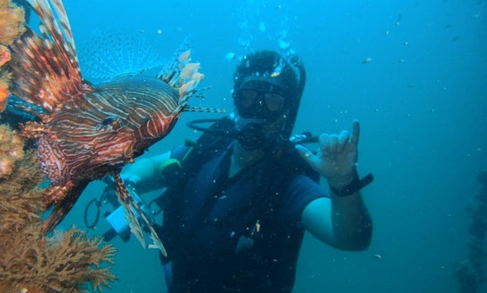 Scuba Diving Trips And Courses In Phuket, Thailand