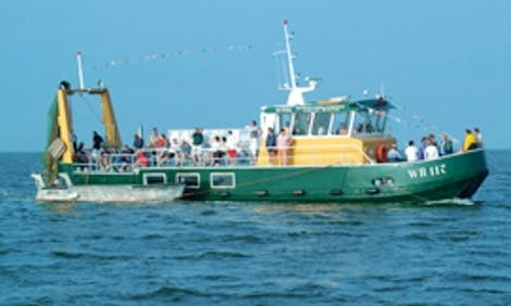 Trawler Fishing Charter in Hippolytushoef