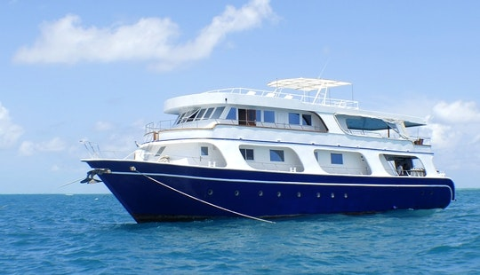 Diving Trips In Male, Maldives