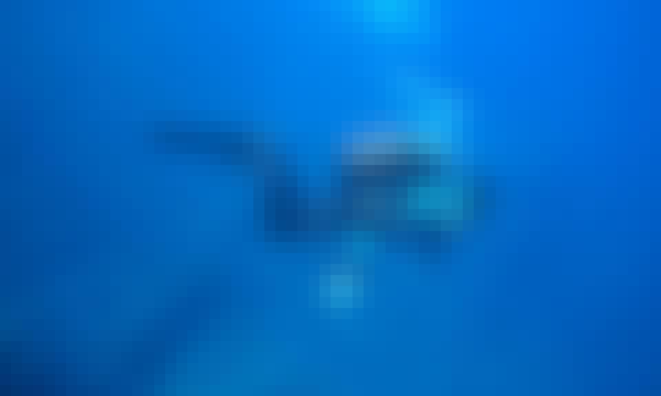 Diving Courses in Tienen